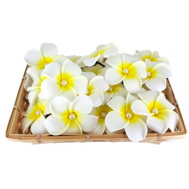 Large-Frangipani-flower-Hair Clip-with-pearl-basket